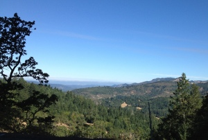 The view from Trinity Rd just north of Sonoma and on the way to Napa
